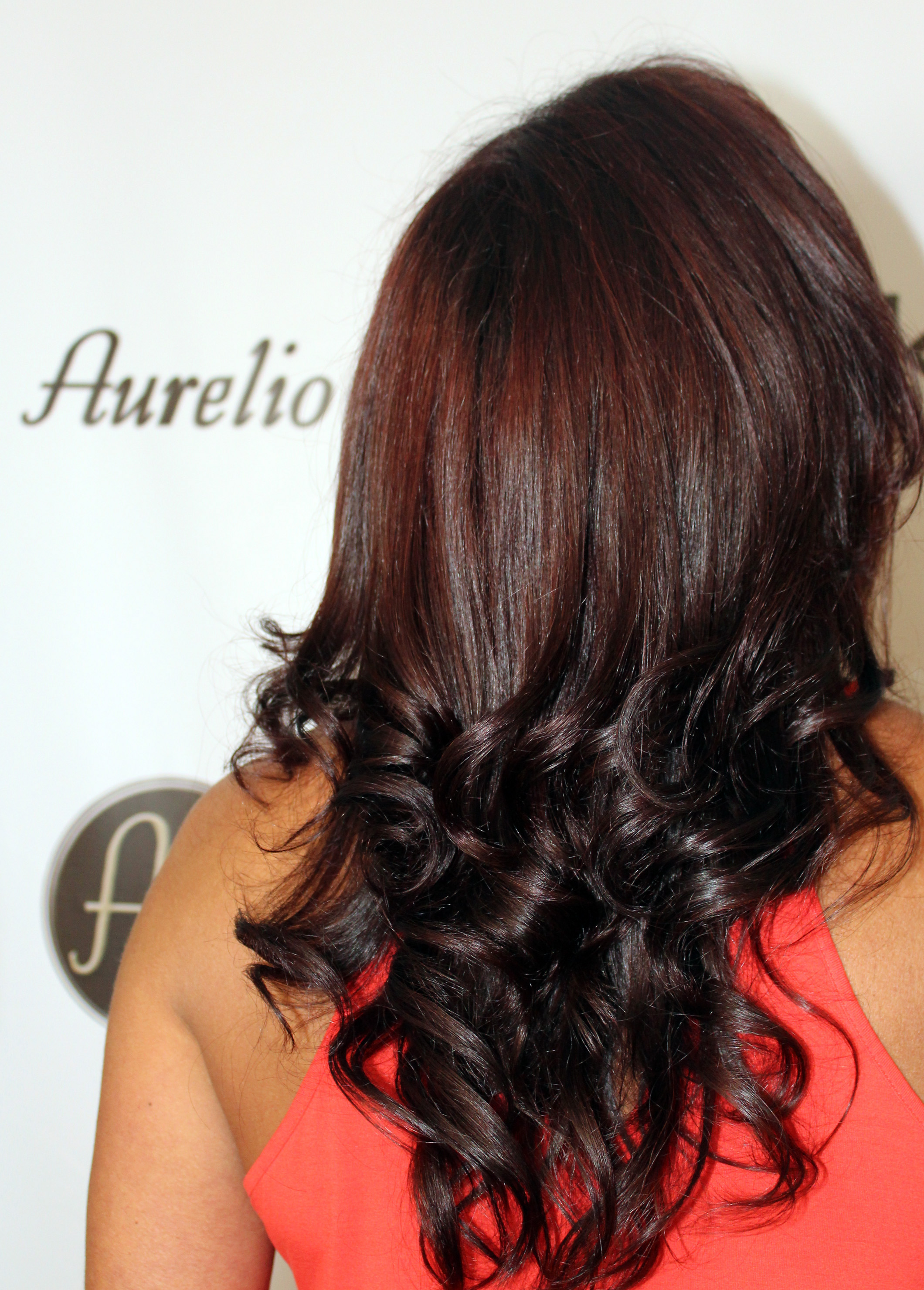 2015 Fall Haircolor Summer To Fall Hair Aurelio Salon Amp Spa