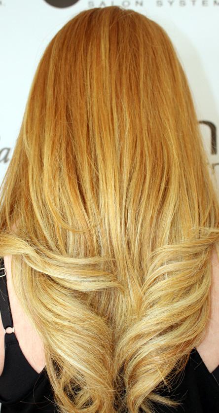 Fall 2015 hair color aurelio salon w (4)